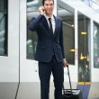 Royalty-Free Stock Photo: Traveling businessman