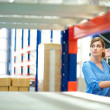 Business woman inspector doing inventory in a warehouse — Stok fotoğraf