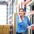 Female logistics worker controlling stock and talking on cellphone in warehouse — Stock Photo #26520955