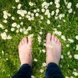 Female feet standing on green grass and white flowers — Stock Photo