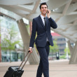 Young business man traveling with bag — Stock Photo #27988891