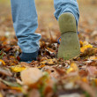 Shoes walking on autumn leaves from rear — Stock Photo