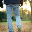 Walking away on autumn day outdoors — Foto Stock