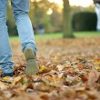 Walking in Autumn — Stock Photo