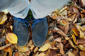 Standing on brown autumn leaves from above — Stock Photo