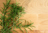 Close up fresh rosemary branches on cutting board — Stock Photo