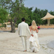 Bride and groom walking on beach — Stock Photo #40689919