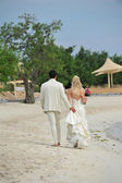 Bride and groom walking on beach — Stock Photo