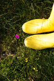 Two boots standing on grass  — Stock Photo