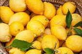 Lemons in a basket — Stock Photo