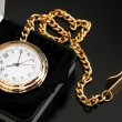Pocket Watch — Foto de Stock