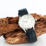 Wristwatch — Stock Photo #25265387