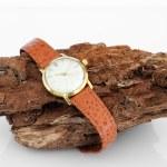 Wristwatch — Stock Photo #25268391