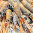 Stock Photo: Crayfish in market