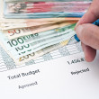 Document budget — Stock Photo