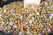 Variedade da azeitona — Foto Stock