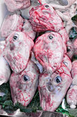 Heads of lamb — Stock Photo