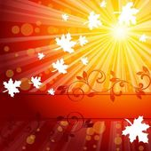 Elegant Autumn Banner — Stock Vector