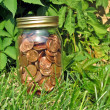 Stock Photo: Home canned pennies