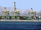 Cargo Container Cranes — Stock Photo
