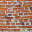 Another bricks in the wall — Foto de Stock