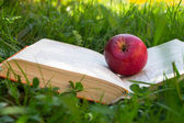 Book on grass — Stock Photo