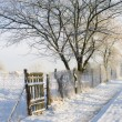Wooden fence near snowy road — Stock Photo