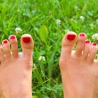 Royalty-Free Stock Photo: Legs on green grass