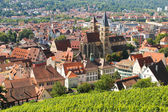 Old german city panoram — Stock Photo