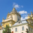 Stock Photo: Old cathedral in Lviv
