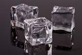 Ice pieces — Stock Photo