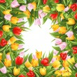 Stock Vector: Flower background with tulips