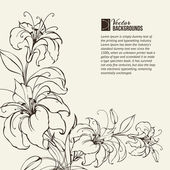 цветут лилии — Cтоковый вектор