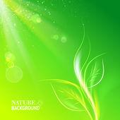 зеленые листья, яркое солнце. — Cтоковый вектор