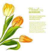 букет тюльпана. — Cтоковый вектор