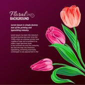 Red tulips and text place. — Stock Vector