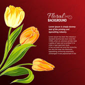 Yellow tulips and text place. — Cтоковый вектор