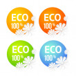 Eco banner of flower. — Stock Vector