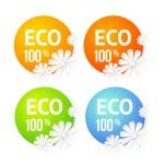 Eco banner of flower. — Stock Vector #25956735