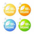 Organic plant labels set. — Stock Vector