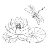 Water Lily and dragonfly. — Stock Vector