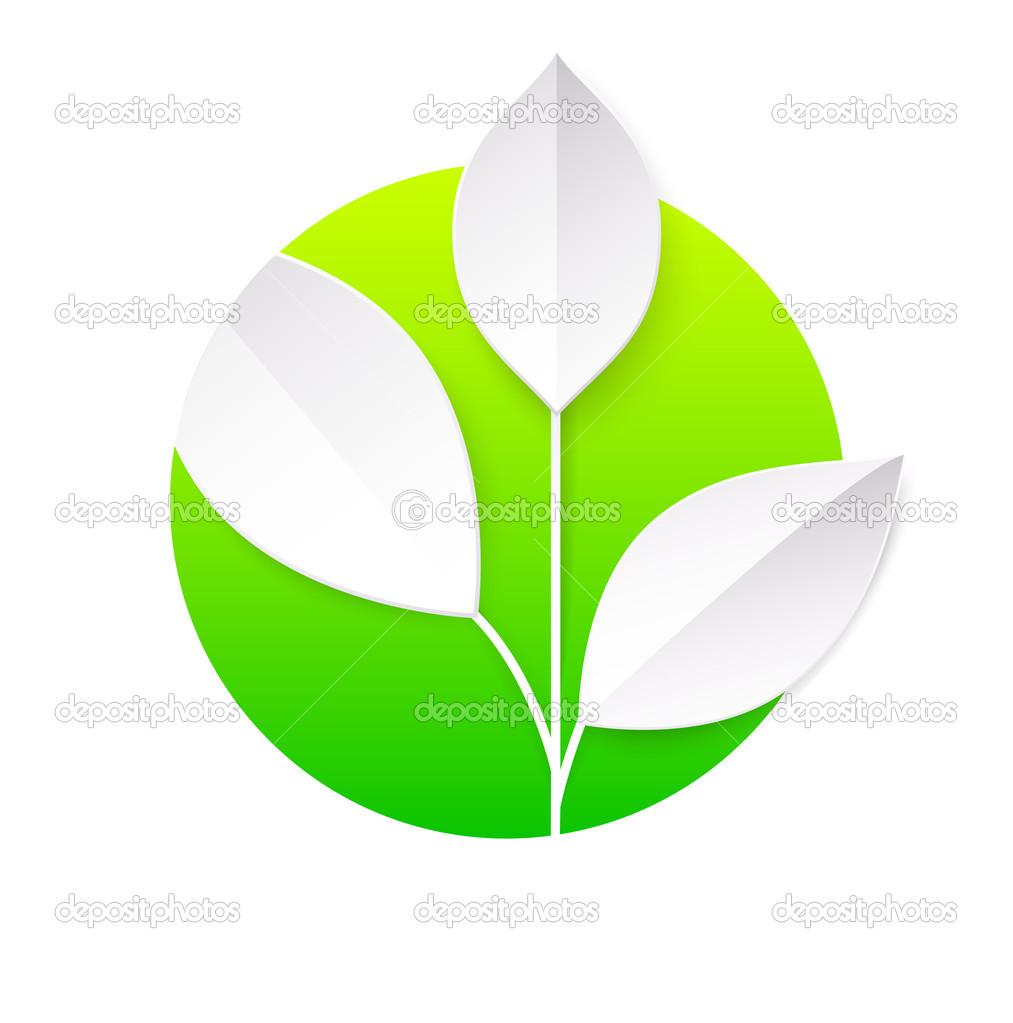 新鲜绿色的树叶圈子