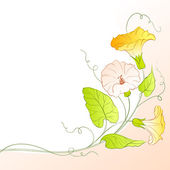 Bindweed on a white. — Stock Vector