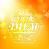 Carpe diem - summer orange typography — Stock Vector