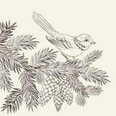 Bird on christmas fir and pinecone. — Stock vektor