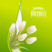 White tulips on a green card for birthday — Vetor de Stock