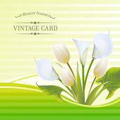 White tulip spring flowers bouquet for sale. Vector illustration. — Stok Vektör