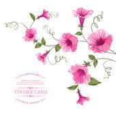 Bindweed flower on paper. — Stock Vector