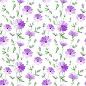 Chicory pattern. — Stock Vector