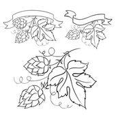 Ripe hops and leaves. — Stock vektor